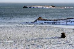 Paisaje del ` s de Islandia en invierno Fotos de archivo