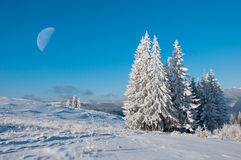 Paisaje del sol del invierno en un bosque de la montaña y la luna Imagenes de archivo