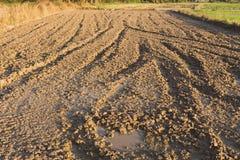 Paisaje del suelo de la grava y tierra del suelo, marrón del pequeño suelo y del suelo seco Imagen de archivo libre de regalías