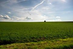 Paisaje del sur de los Países Bajos fotografía de archivo