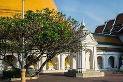 Paisaje del templo de Phra Pathom Chedi Fotos de archivo libres de regalías