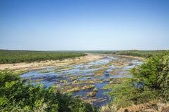 Paisaje del tiempo de verano en el parque nacional de Kruger, Suráfrica Fotografía de archivo libre de regalías