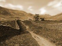 Paisaje del tono de Cepia en los valles de yorkshire Foto de archivo libre de regalías