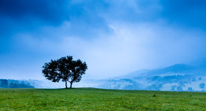 Paisaje del valle Imagenes de archivo