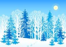 Paisaje del vector del invierno Fotografía de archivo libre de regalías