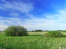 Paisaje del verano Imagen de archivo libre de regalías