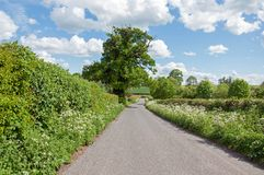 Paisaje del verano abajo de un carril del país en el campo de Herefordshire Fotografía de archivo libre de regalías