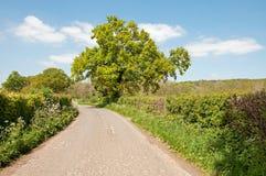 Paisaje del verano abajo de una carretera nacional en el campo de Herefordshire Imagenes de archivo