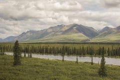 Paisaje del verano cerca del parque nacional de Denali Fotografía de archivo