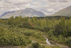 Paisaje del verano cerca del parque nacional de Denali Fotos de archivo