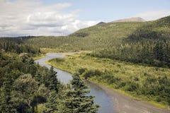 Paisaje del verano cerca del parque nacional de Denali Imagenes de archivo