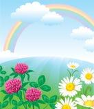 Paisaje del verano con el arco iris Foto de archivo libre de regalías