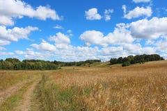 Paisaje del verano con el campo, la carretera nacional, el cielo azul con las nubes y los árboles Imagenes de archivo