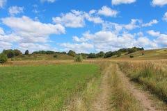 Paisaje del verano con el campo, la carretera nacional, el cielo azul con las nubes y los árboles Fotografía de archivo libre de regalías