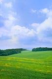 Paisaje del verano con el cielo azul Imagen de archivo
