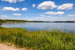 Paisaje del verano con el lago Foto de archivo