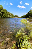 Paisaje del verano con el río Foto de archivo