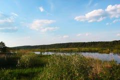 Paisaje del verano con el río Foto de archivo libre de regalías