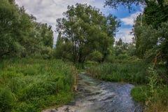 Paisaje del verano con el río cerca de Norcia, Italia Foto de archivo