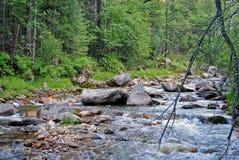 Paisaje del verano con el río de la montaña en montañas cerca del lago Baikal Imagen de archivo libre de regalías