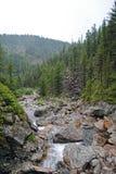 Paisaje del verano con el río de la montaña en montañas cerca del lago Baikal Fotografía de archivo