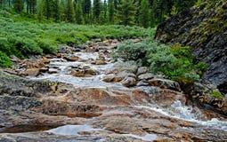Paisaje del verano con el río de la montaña en montañas cerca del lago Baikal Foto de archivo libre de regalías