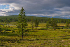 Paisaje del verano con el río, el bosque, los acantilados y las nubes en el cielo azul Imagenes de archivo
