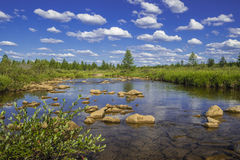 Paisaje del verano con el río, el bosque, los acantilados y las ondas Foto de archivo libre de regalías