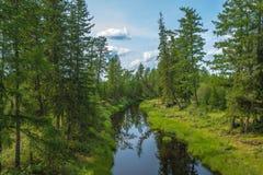 Paisaje del verano con el río, el bosque, los acantilados y las ondas Imagen de archivo libre de regalías