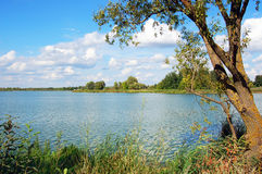 Paisaje del verano con el río y las nubes Imagen de archivo libre de regalías