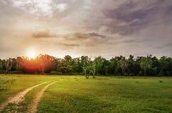 Paisaje del verano con la hierba verde, el camino y las nubes Imagen de archivo libre de regalías