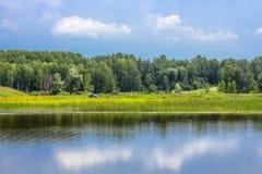 Paisaje del verano con los árboles de abedul en el río Foto de archivo