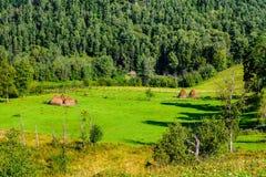 Paisaje del verano con los pajares en las montañas Fotos de archivo libres de regalías