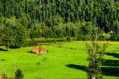 Paisaje del verano con los pajares en las montañas Foto de archivo