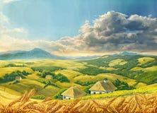 Paisaje del verano con trigo Imagen de archivo libre de regalías