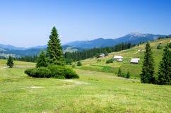 Paisaje del verano de la montaña imagen de archivo