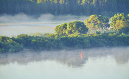 Paisaje del verano de la opinión de ojo de pájaros de la naturaleza y del río pintorescos del bosque Imagen de archivo libre de regalías
