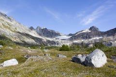 Paisaje del verano del ` s de Alaska Foto de archivo