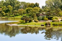 Paisaje del verano el d?a soleado de isla japonesa en el jard?n bot?nico de Chicago imágenes de archivo libres de regalías