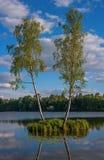 Paisaje del verano en el palacio del parque de Gatchina St Petersburg, Rusia Fotografía de archivo