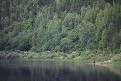 Paisaje del verano en el río Foto de archivo libre de regalías