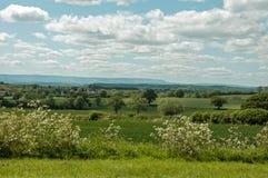 Paisaje del verano en Inglaterra Imagen de archivo libre de regalías