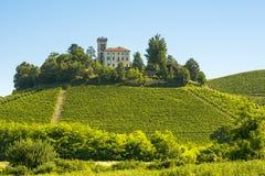 Paisaje del verano en Langhe (Italia) Imagenes de archivo