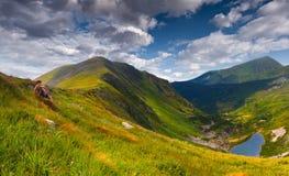 Paisaje del verano en las montañas Imagen de archivo libre de regalías