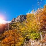 Paisaje del verano en las montañas Salida del sol Imagen de archivo