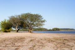 Paisaje del verano en los bancos de la arena del agua de río y del cielo claro en la ciudad de la provincia de la federación de l imagen de archivo