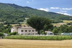 Paisaje del verano en los marzos cerca de Urbino Foto de archivo