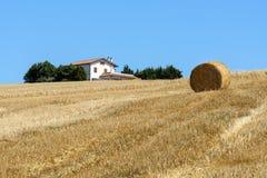 Paisaje del verano en los marzos (Italia) Fotografía de archivo