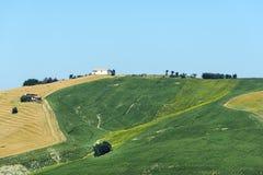 Paisaje del verano en los marzos (Italia) Fotos de archivo libres de regalías