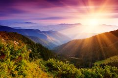 Paisaje del verano en montañas Foto de archivo